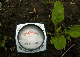 Определение типа почвы на участке (часть 2), определение химического состава