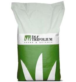 Смесь семян «Турбо» (DLF Turfline Turbo)