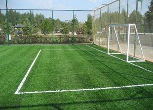 Каким должен быть спортивный газон