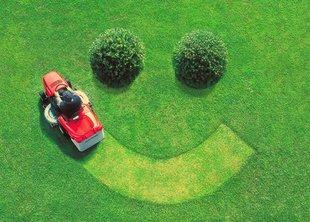 Миллион за газон