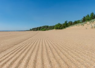 В СПб к летнему сезону благоустроили 20 пляжей