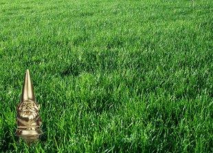Зеленый газон на новый год
